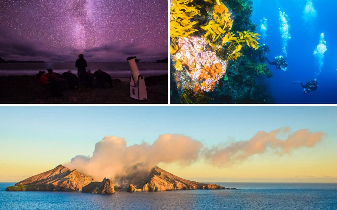 Five unforgettable small island experiences in New Zealand